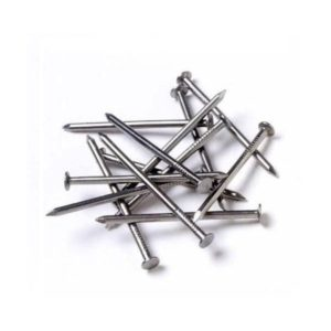 Common Wire Nail for sale Online at Topmost Hardware