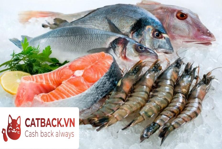 Bảo quản hải sản đông lạnh như thế nào là đúng?