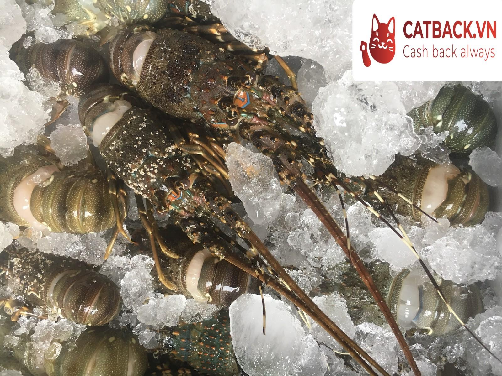 Bảo quản hải sản bằng biện pháp thông khí