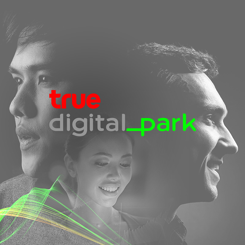 Degito Portfolio True Digital Park Website Design and Development