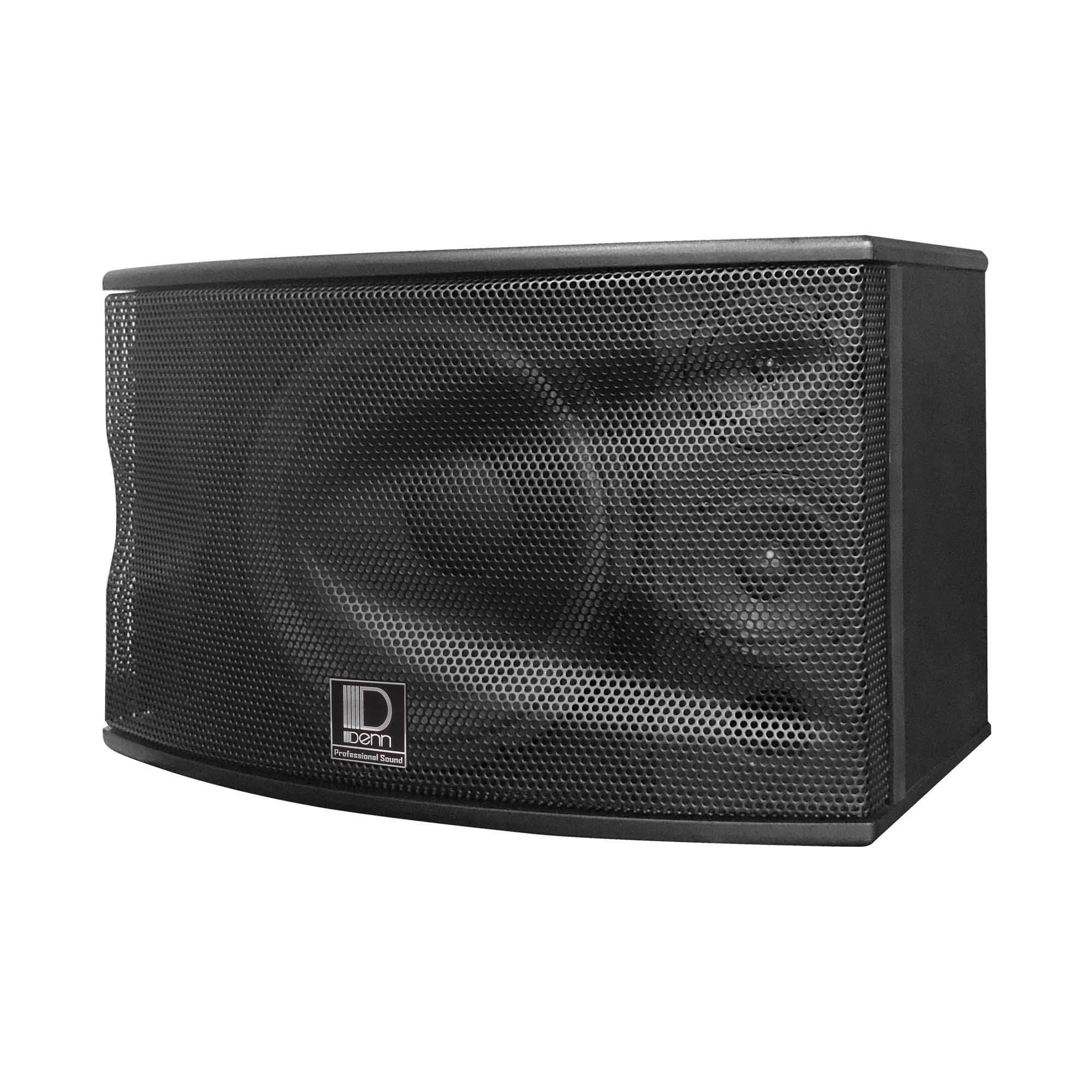 """12"""" 2-Way Karaoke Speaker"""