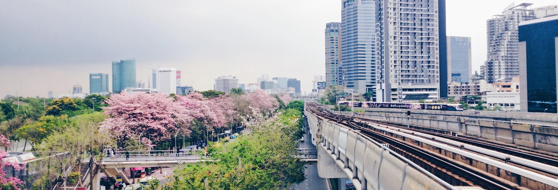 คอนโด สะพานควาย พหลโยธิน หมอชิต ประดิพัทธ์ ทำเลรายล้อม 3 สวนสาธารณะ เติมเต็มการเดินทางด้วยรถไฟฟ้า