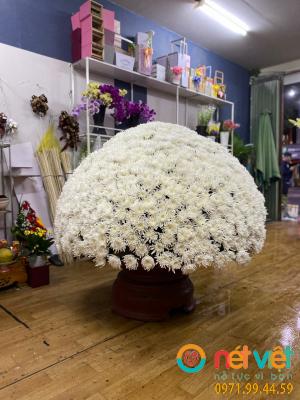 12 Vòng hoa như mẫu