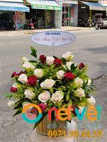 hộp hoa sn nữ