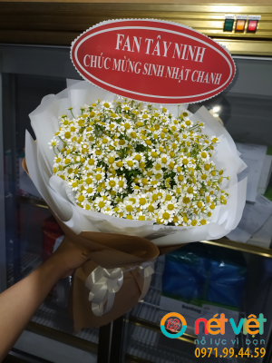 Bó hoa cúc tana