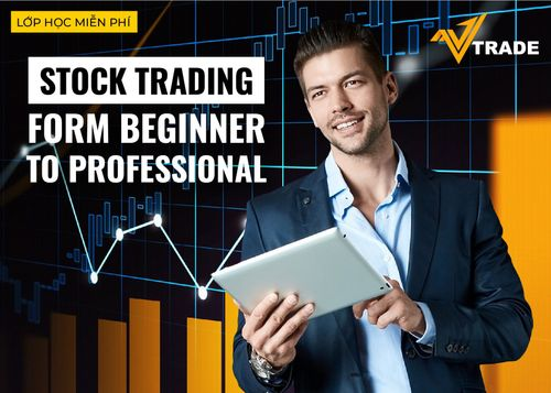 Stock Trading: From Beginner to Professional