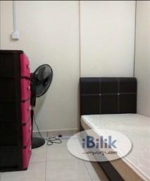 Room Rental in  - Single Room at Taman Nusa Bestari 2, Iskandar Puteri (Free WiFi, utility included)