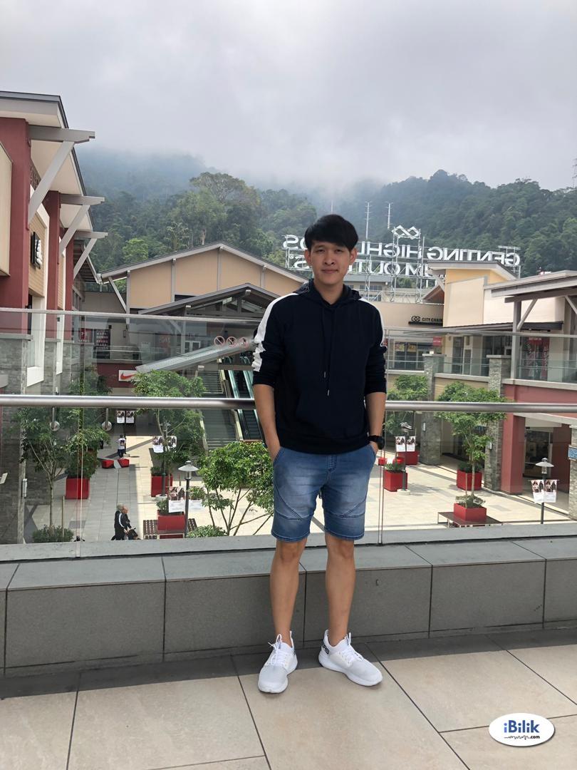 Mr Ho