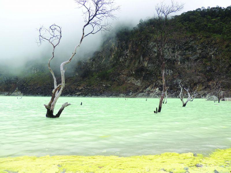 Land in destruction after a volcanic eruption Kawah Putih