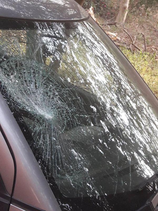 Professor Buddha Singh tweeted photos of his vandalised car.