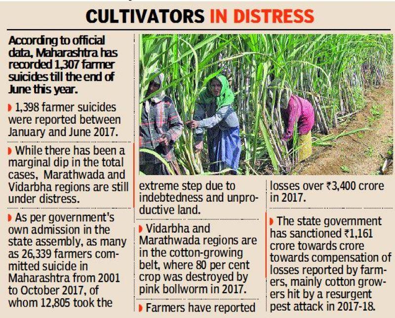 farmerss
