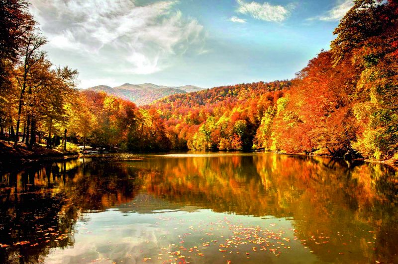 Dilijan National Park, a reserve famous for its millennium-old monasteries and eagles, bears, lynxes, and wolves