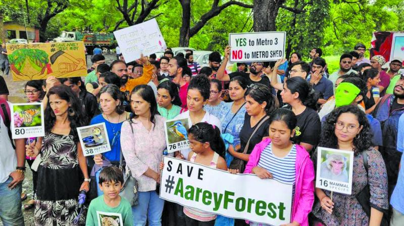 A bench of justices Arun Mishra and Deepak Gupta sought a status report with pictures on plantation, transplantation and cutting trees of Aarey colony area of Brihanmumbai Municipal Corporation (BMC).  (photo: File)
