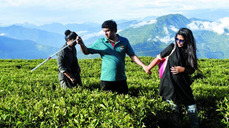 Temi tea gardens in Sikkim: (Photo:Aratrika Bhattacharya)