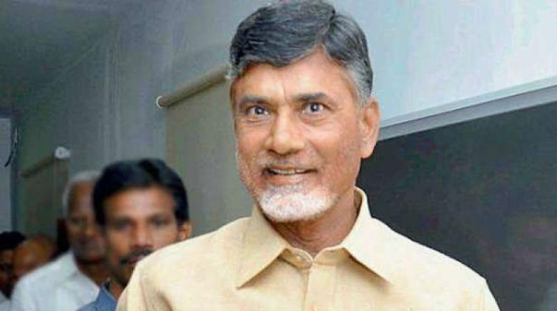 Andhra Pradesh Chief Minister N. Chandrababu Naidu (Photo: PTI)