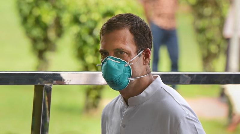 Rahul Gandhi (PTI photo)
