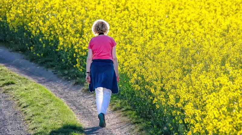 The protective effects of walking pace were also found to be more pronounced in older age groups. (Photo: Pixabay)