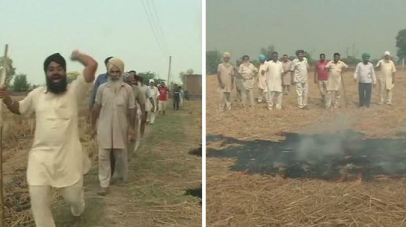 The protesting farmers lashed out at the government for not making proper provision before implementing the order, and asserted that substitute to stubble burning is expensive machinery, which is not a possibility for debt-ridden farmers. (Photo: ANI/Twitter)