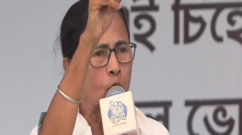 West Bengal CM Mamata Banerjee. (ANI)