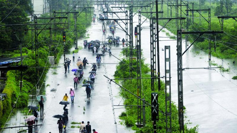 The tracks between Kurla and Vidyavihar. (Photo: Rajesh Jadhav)