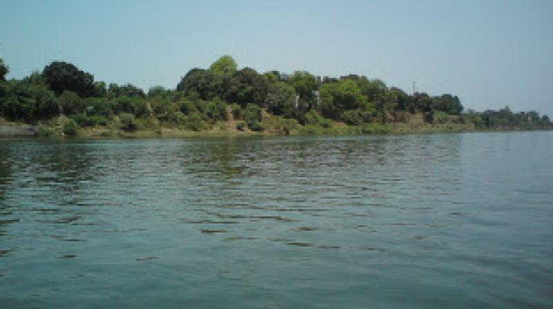 The Narmada, considered one of the seven sacred rivers by Hindus, is at the centre of a massive tree-plantation as well as anti-liquor drive by the BJP government in the state. (Photo: File)