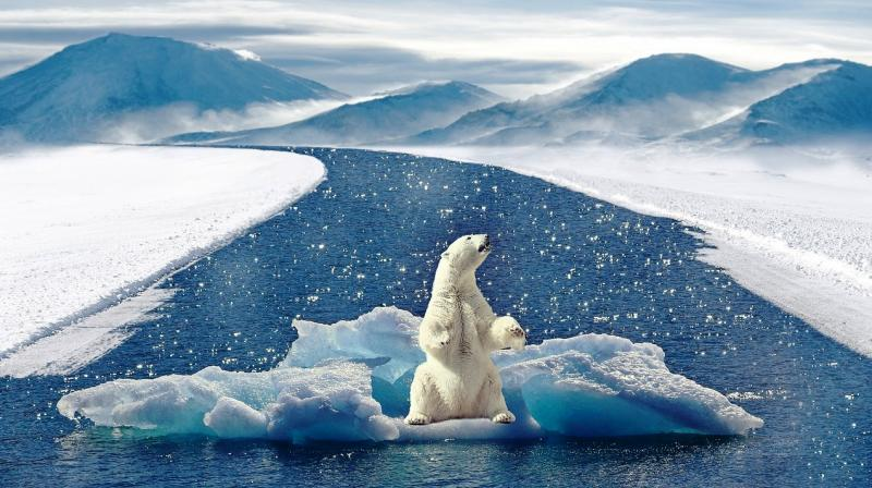 Climate change and biodiversity loss are also considered core planetary boundaries meaning if they are exceeded for a prolonged time, they can shift the planet into new, less hospitable, stable states. (Photo: Representational/Pixabay)