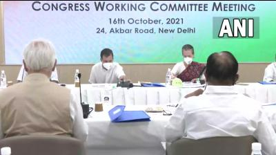 Crucial Congress Working Committee meets to discuss organizational polls