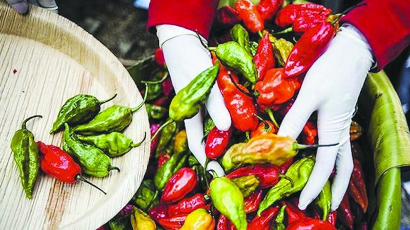 The DRDO has started commercial supply of 'chilli grenades' using Bhot Jalokia chilli of Assam.