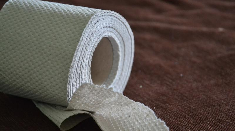 Waste toilet paper is not often considered an asset. Yet it is a rich source of carbon, containing 70-80 per cent of cellulose on a dry basis. (Photo: Pixabay)