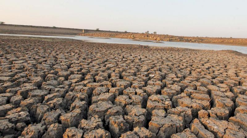 The government has claimed to have worked on water conservation and irrigation. (Photo: PTI)
