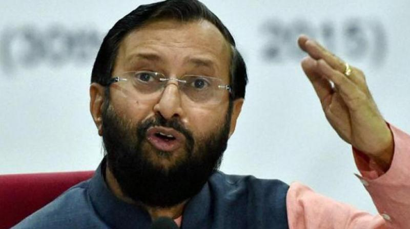 Last week, social media controversy erupted after HRD Minister Prakash Javadekar congratulated the Jio Institute, which is yet to be operational, on securing the 'IoE' status. (Photo: File)