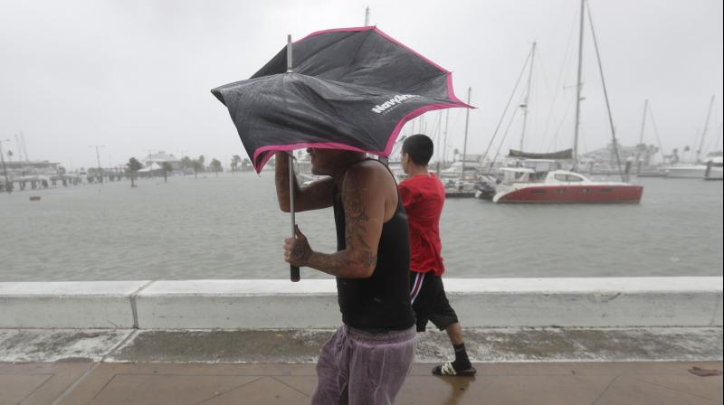 Man battles with his umbrellas as Hurricane Hanna begins to make landfall, Saturday, July 25, 2020, in Corpus Christi, Texas. The National Hurricane Center said Saturday morning that Hanna's maximum sustained winds had increased and that it was expected to make landfall Saturday afternoon or early evening. (AP)