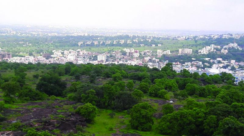 Bhopal's green cover has shrunk by 44 per cent in just two decades.