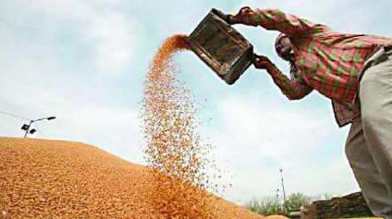Foodgrains will get cheaper under GST.
