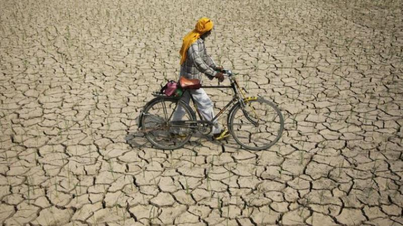 According to the developers of the new satellite, early warning system for the world's 500,000 dams, shrinking reservoirs in India, Morocco, Iraq and Spain could spark the next 'day zero' water crisis, The Guardian reported. (Representational Image)