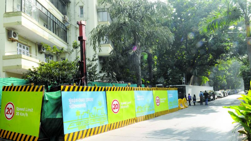 Petitioner complained that 5,000 trees would be axed for the Metro-3 project.