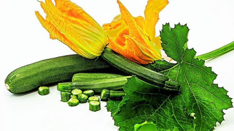 A study  in The American Journal of Clinical Nutrition exhorts the benefits of including zucchini in one's diet as it can reduce LDL cholesterol.
