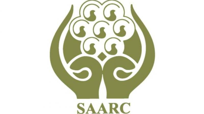 """Saarc was established to promote that cooperation """"within an institution framework""""."""