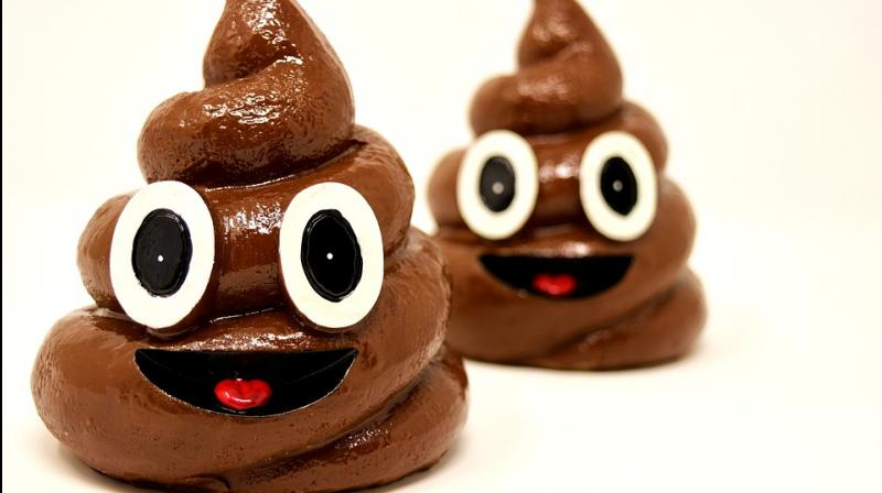 Notably, western men, with a life expectancy of 76-years produce 11,030kg of excrement in their lives. (Photo: Pixabay)