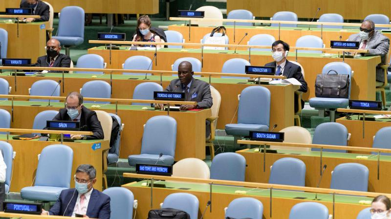 A UN handout photo shows delegates attending the 75th session of the United Nations General Assembly. (AFP)