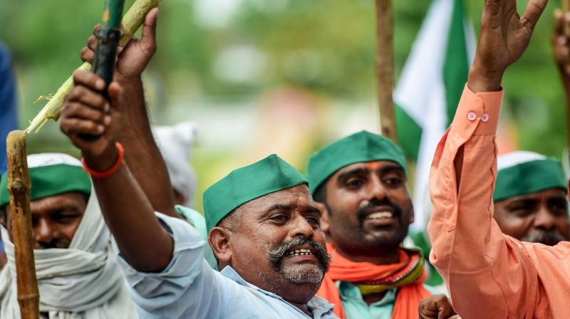 Farmers of the Bharatiya Kisan Union shout slogans against the Union government during a farmers' protest against three farm bills. (AFP)