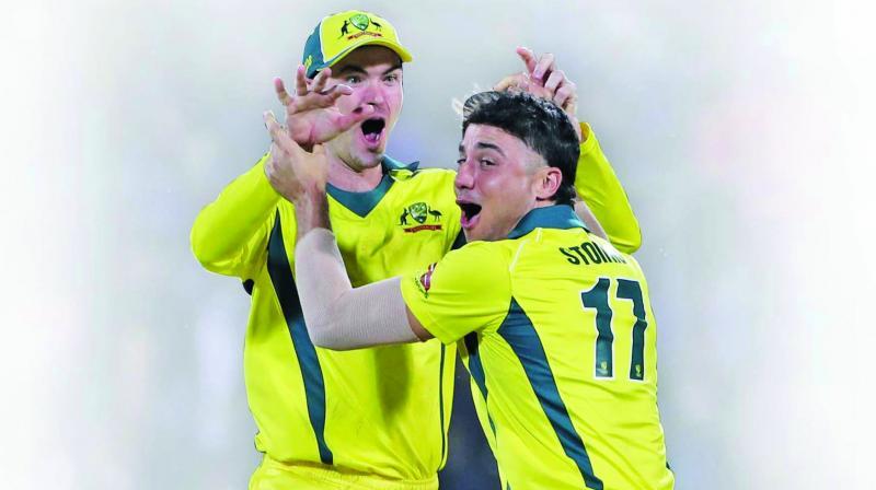 Marcus Stoinis and Ashton Turner celebrate Virat Kohli's wicket. (Photo: PTI)