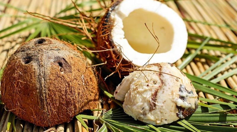 According to Michels, it is worse than lard and yet a lot of people believe coconut oil to be healthy. (Photo: Pixabay)