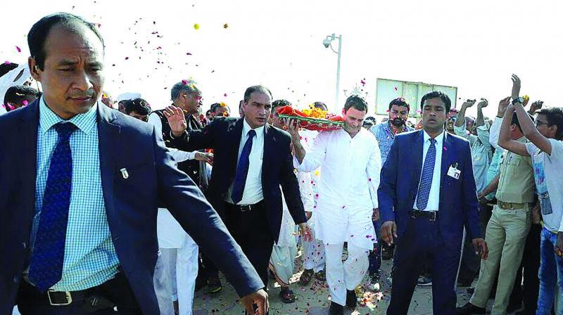 Congress president Rahul Gandhi at Somnath Temple in Gujarat. (Photo: PTI)