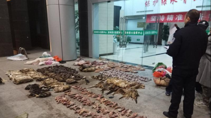File photo provided the file photo provided by the Anti-Poaching Special Squad, police look at items seized from store suspected of trafficking wildlife in Guangde city in central China's Anhui Province. AP photo