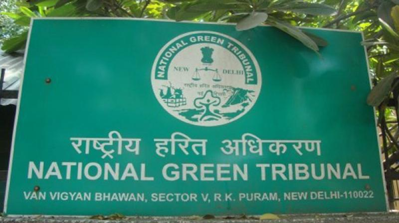 Alleging long-term damage to the Krishna river floodplains, on which much of the capital city is proposed to be built, several people had approached the National Green Tribunal (NGT). (Photo: PTI/File)