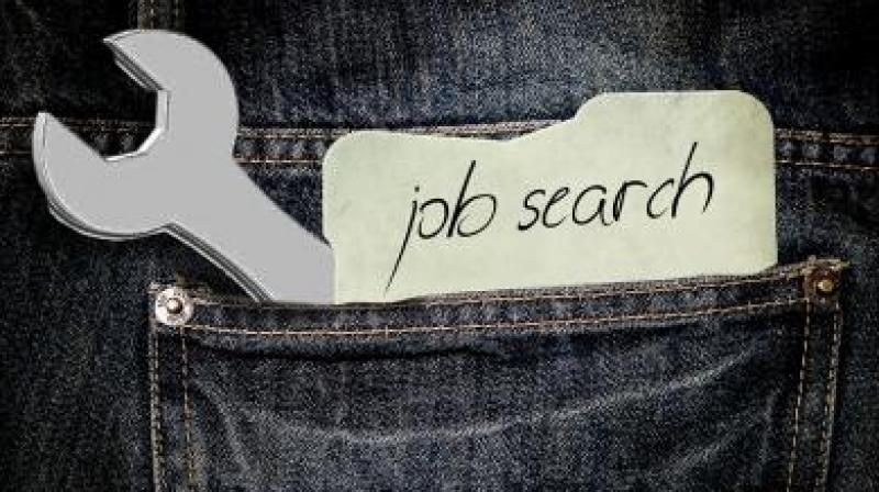 Government job searches witnessed a boost despite a surge in tech opportunities.