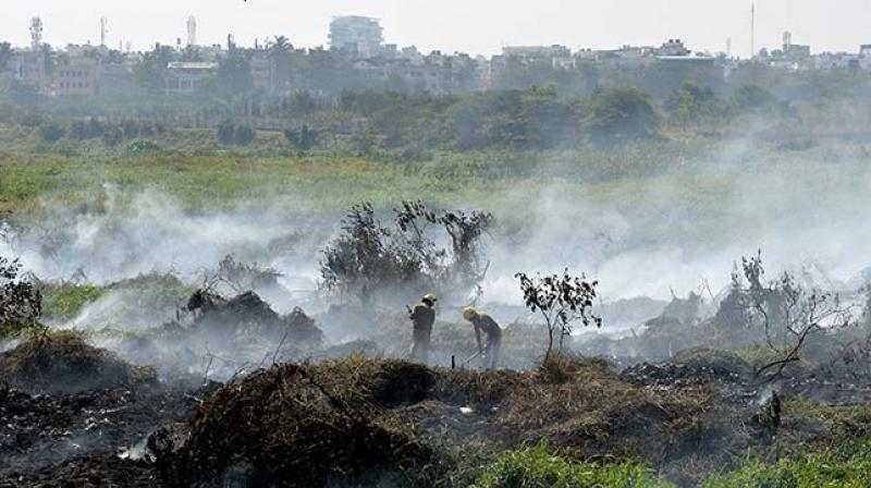 Many of those lakes in Bengaluru that remain are heavily polluted. (Photo: AFP)