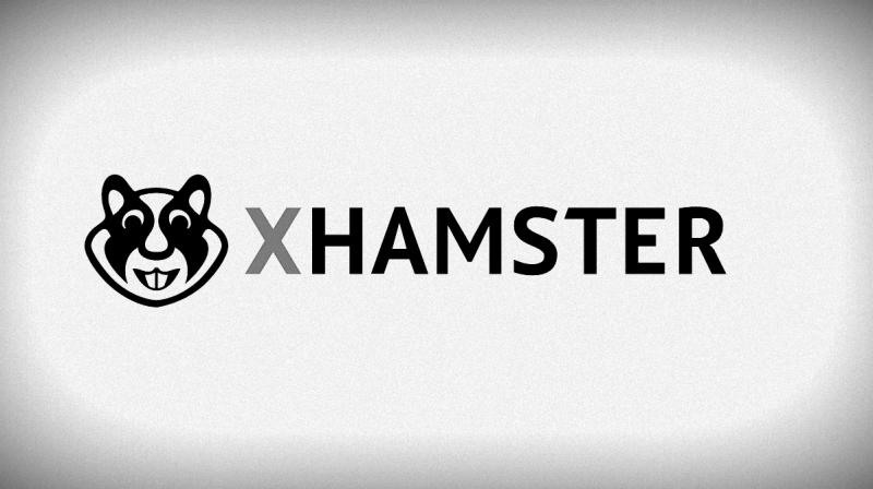 Porn website hacked, 380,000 accounts spilled online, xHamster claims fhack
