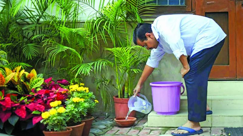 CM Arvind Kejriwal inspects his home to prevent the spread of mosquito-borne diseases during '10 Hafte, 10 Baje, 10 Minute' campaign against dengue in New Delhi on Sunday. (Photo: PTI)